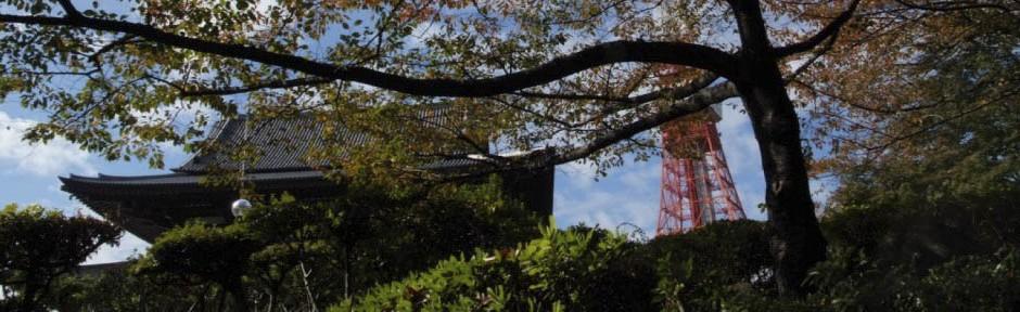 Giappone | Elena Landi